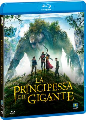 La Principessa E Il Gigante (2017).mkv AC3 iTA-NOR BluRay 480p x264 SUB